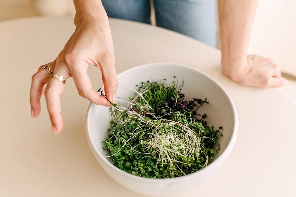 Kiełki jako świetne źródło cennych składników odżywczych